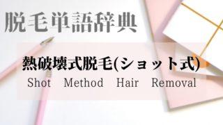 熱破壊式(ショット式)脱毛